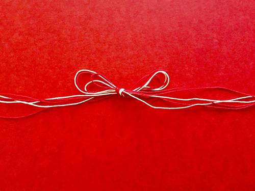 ご縁赤い熨斗水引