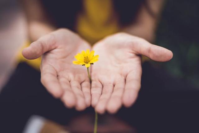 黄色の花を持つ女性