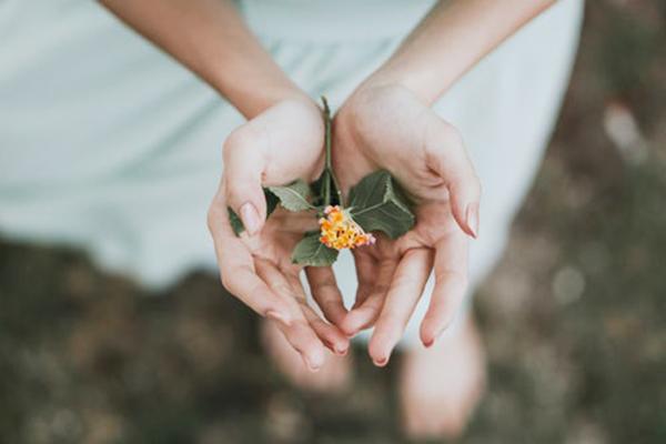手のひらの中にある花.jpg