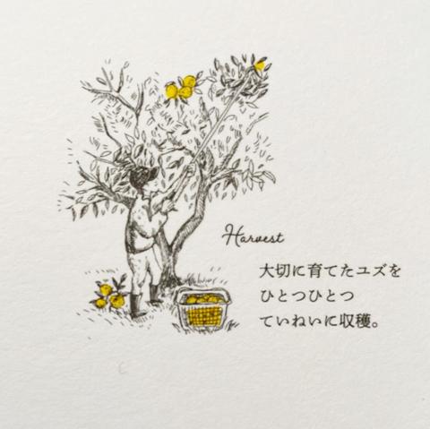 yuzustory1.jpg