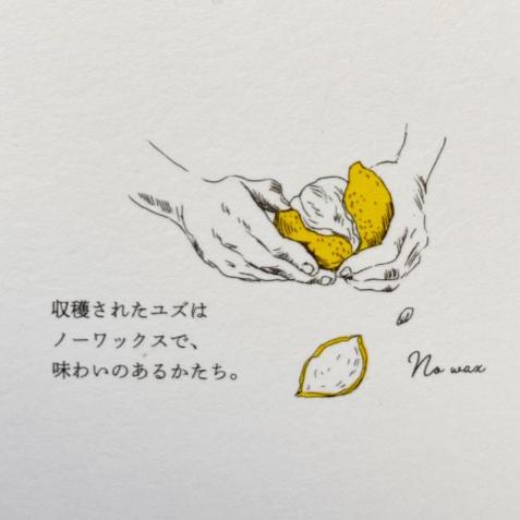 yuzustory2.jpg